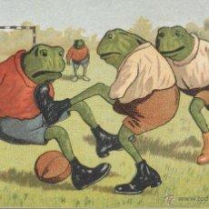 Postales: RANITAS FUTBOLERAS. POSTAL COLOR, SIN CIRCULAR, IMPRESA EN ALEMANIA, C. 1915. Lote 41598342