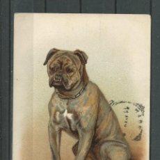 Postales: POSTAL ANTIGUA -ALEMANA - DE BONITO PERRO CIRCULADA EN 1910 FALTA SELLO. Lote 46687712