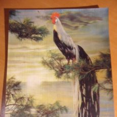 Postales: POSTAL CON SENSACION DE RELIEVE. DE JAPON. ESCRITA.. Lote 52887161