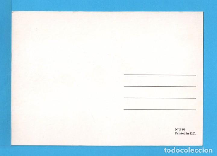 Postales: postal de la familia pato donald disney editada por beascoa s.a. barcelona sin circular Nº 91 - Foto 2 - 75239225