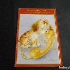 Cartes Postales: POSTAL DE ANIMALES PERRO BONITA VISTAS LA DE LA FOTO VER TODOS MIS LOTES DE POSTALES. Lote 79224349