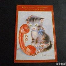 Cartes Postales: POSTAL DE ANIMALES GATO BONITA VISTAS LA DE LA FOTO VER TODOS MIS LOTES DE POSTALES. Lote 79224797