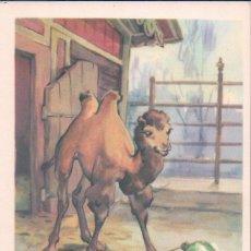 Postales: POSTAL RUSA - DIBUJO CAMELLO GAUCHE . Lote 81873652