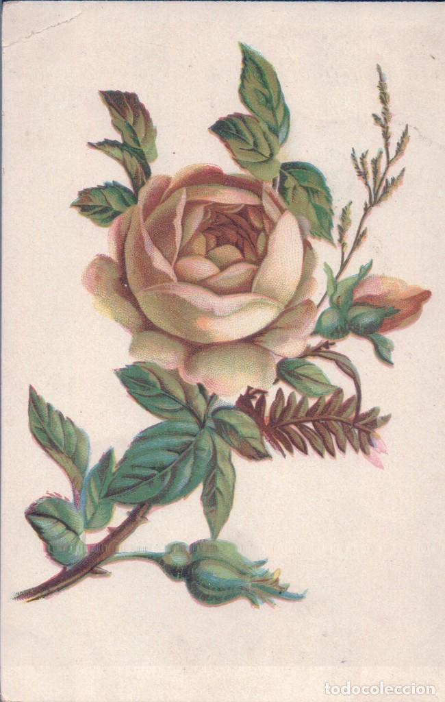 POSTAL DIBUJO ROSA AMARILLA - CIRCULADA1908 (Postales - Dibujos y Caricaturas)