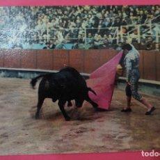 Postales: POSTAL DE:TORERO,(SIN CIRCULAR). Lote 105875647