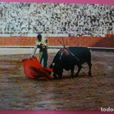 Postales: POSTAL DE:TORERO,(SIN CIRCULAR). Lote 105875659