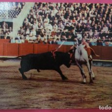 Postales: POSTAL DE:TORERO,(SIN CIRCULAR). Lote 105875675