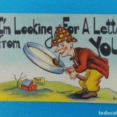 Postales: ANTIGUA POSTAL - USA - POST CARD - ANIMADAS, CARICATURAS - HUMOR - BROMAS - ... R-8327. Lote 111963839