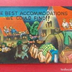Postales: ANTIGUA POSTAL - USA - POST CARD - ANIMADAS, CARICATURAS - HUMOR - BROMAS - ... R-8330. Lote 111964075