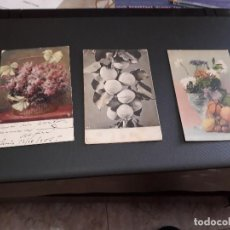 Postales: LOTE DE 3 POSTALES - PLANTAS Y FRUTAS - ANTIQUISIMAS- ( LOTE 45 ). Lote 119535471
