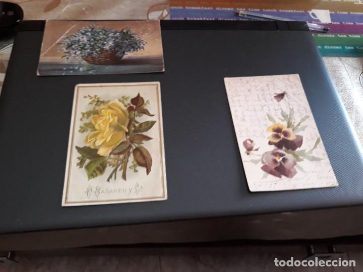 LOTE DE 3 POSTALES - PLANTAS Y FLORES - ANTIQUISIMAS- ( LOTE 47 ) (Postales - Dibujos y Caricaturas)