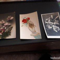 Postales: LOTE DE 3 POSTALES - PLANTAS Y FLORES - ANTIQUISIMAS- ( LOTE 49 ). Lote 119535879