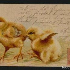 Postales: POSTÁL ILUSTRADA.POLLITOS.CIRCULADA EN 1903.. Lote 124891847