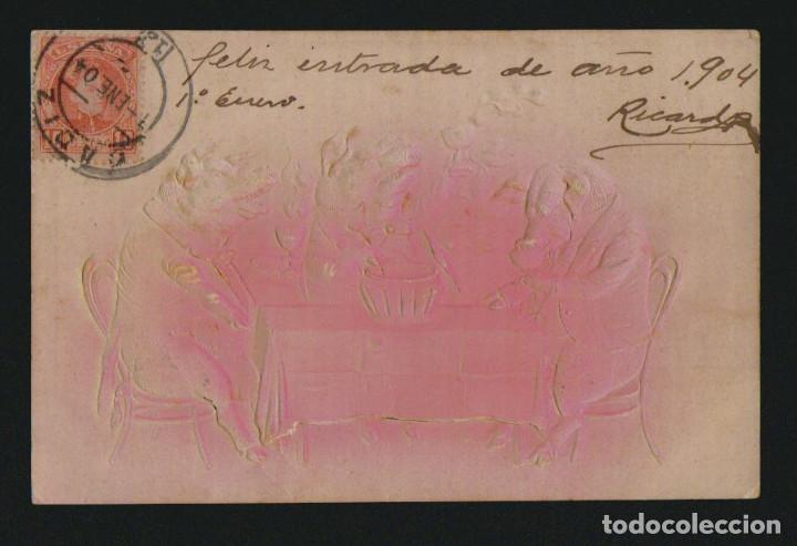 POSTÁL ILUSTRADA.CERDITOS EN RELIEVE.CIRCULADA EN 1904. (Postales - Dibujos y Caricaturas)