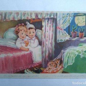 INFANTIL GATOS SERIE 31