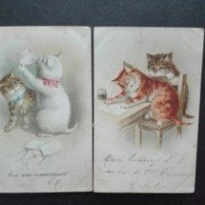 Postales: POSTALES GATOS ESCRITAS 1903. Lote 142504368