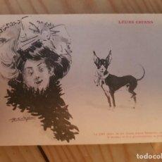 Postales: ANTIGUA POSTAL COMICA DIBUJO PERRO. Lote 169042940
