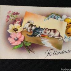 Postales: TARJETA POSTAL GATITOS 390. Lote 182006662