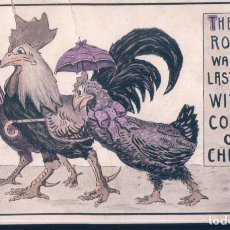 Postales: POSTAL THE OLD ROOSTER WAS OUT LAST NIGHT WITH A COUPLE OF CHICKENS - DIBUJO GALLO Y POLLOS. Lote 191683423