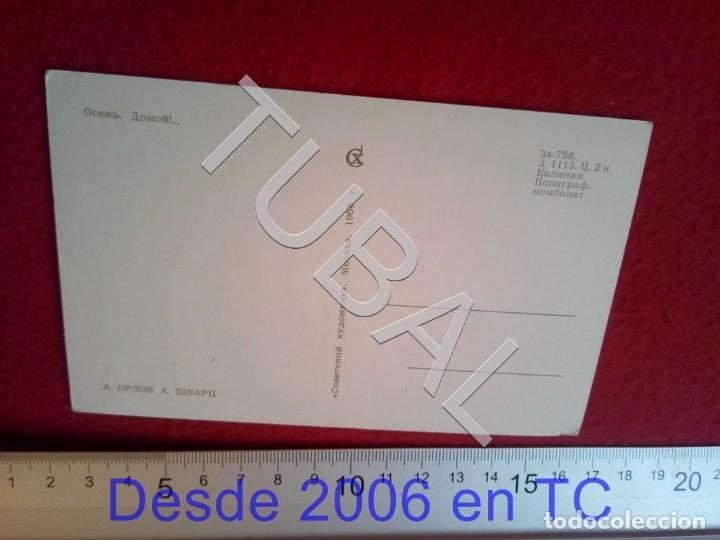 Postales: TUBAL POSTAL RUSA CAZA CINEGETICA 1968 B47 - Foto 2 - 194151357