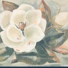 Postales: POSTAL DIBUJO FLOR BLANCA - COTTON FLOWER - ILUTRADA M G HUST - FIRMADA. Lote 194757431