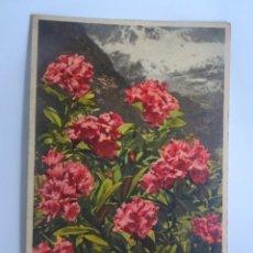 Postales: POSTAL ILUSTRADA POR CLASIFICAR, VER FOTOS. Lote 222034781