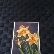 Postales: PRECIOSA POSTAL FLORES Nº 1217 - LA DE LA FOTO VER TODAS MIS POSTALES. Lote 223465231