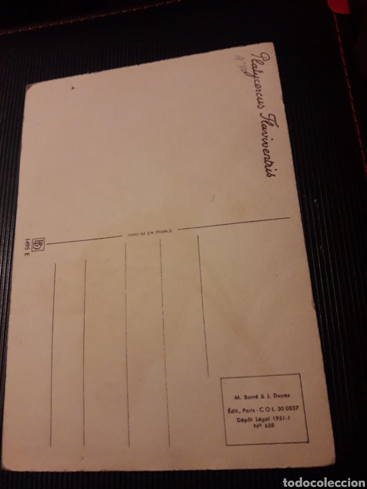 Postales: Antigua postal, M. Barre y J. Dayez - Foto 2 - 237021340