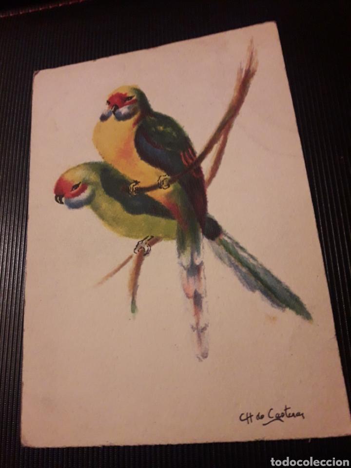 ANTIGUA POSTAL, M. BARRE Y J. DAYEZ (Postales - Dibujos y Caricaturas)