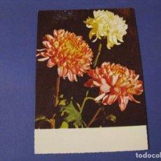 Postales: POSTAL ED. J.L.M. ALEMANIA. FLORES. ESCRITA. 1970.. Lote 243905640