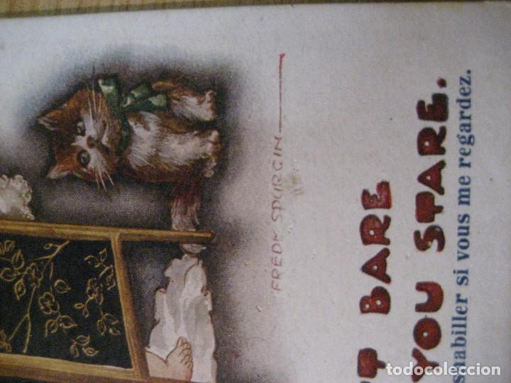 Postales: antigua postal ilustracion fred spurgin . niña con gato . escrita en trasera - Foto 2 - 246569395