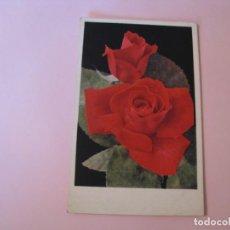 Postales: POSTAL DE FLORES. ROSAS (MCGREDYS SCARLET). INGLATERRA.. Lote 263262680