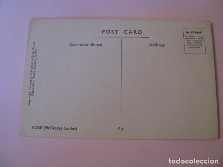 Postales: POSTAL DE FLORES. ROSAS (MCGREDYS SCARLET). INGLATERRA. - Foto 2 - 263262680