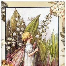 Postales: 7360B -CICELY MARY BARKER- HADA DE LAS FLORES (FLOWERS FAIRIES) CODE PC 6B1 -14,5X10,3 CM - NUEVA. Lote 277750793