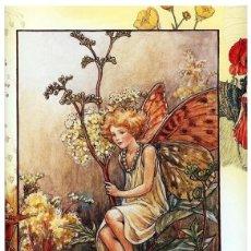Postales: 7360B -CICELY MARY BARKER- HADA DE LAS FLORES (FLOWERS FAIRIES) CODE PC 6B4 -14,5X10,3 CM - NUEVA. Lote 277751353