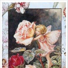 Postales: 7360B -CICELY MARY BARKER- HADA DE LAS FLORES (FLOWERS FAIRIES) CODE PC 6B5 -14,5X10,3 CM - NUEVA. Lote 277751593