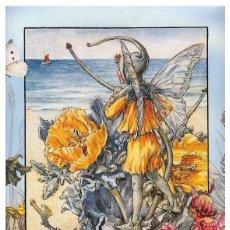 Postales: 7360B -CICELY MARY BARKER- HADA DE LAS FLORES (FLOWERS FAIRIES) CODE PC 6B7 -14,5X10,3 CM - NUEVA. Lote 277751933