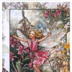 Postales: 7360B -CICELY MARY BARKER- HADA DE LAS FLORES (FLOWERS FAIRIES) CODE PC 6B11-14,5X10,3 CM - NUEVA. Lote 277752928