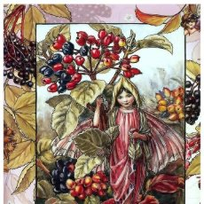 Postales: 7360B -CICELY MARY BARKER- HADA DE LAS FLORES (FLOWERS FAIRIES) CODE PC 6B12-14,5X10,3 CM - NUEVA. Lote 277753533