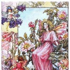Postales: 7360B -CICELY MARY BARKER- HADA DE LAS FLORES (FLOWERS FAIRIES) CODE PC 6B13-14,5X10,3 CM - NUEVA. Lote 277753963