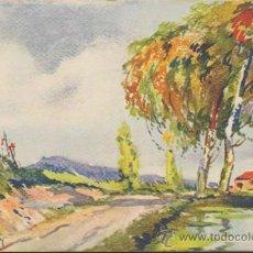 Postales: POSTAL. DIBUJADA Y COLOREADA A MANO. FECHADA EN 1928.. Lote 34164911