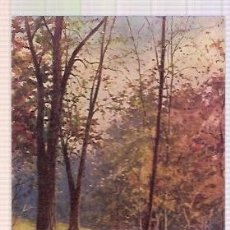 Postales: TUCK'S POST CARD SALTRAIN WOODS DEVON. Lote 34490024