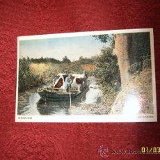 Postales: MARAVILLOSA POSTAL HOLANDESA DE UN HOMBRE TRANSPORTANDO GANADO EN BARCA.1957.VER FOTO.. Lote 36984452