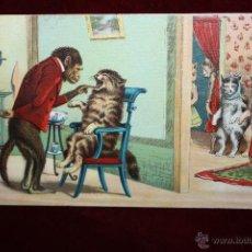 Postales: POSTAL HUMORISTICA DE LOS AÑOS 50-60. ANIMALES. SIN CIRCULAR. Lote 47693051