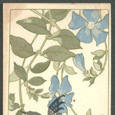 Postales: POSTAL 1901 U A PERVENCHE GRANDE VINCA MAJOR. Lote 56259779