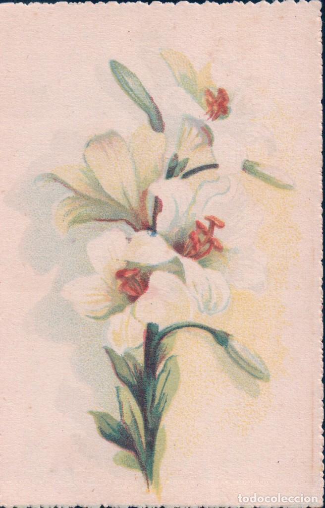 POSTAL DIBUJO FLOR - L.F.M (Postales - Postales Temáticas - Dibujos originales y Grabados)