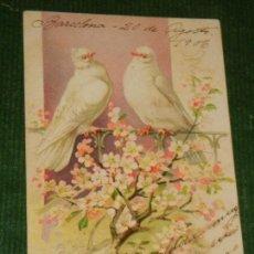 Postales: ANTIGUA POSTAL PALOMAS - CIRCULADA 1906 - REVERSO SIN DIVIDIR. Lote 109381631