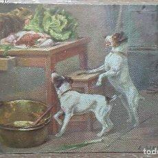 Postales: POSTAL DE 1909. Lote 151108370