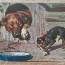 Postales: POSTAL DE 1902. Lote 151513666