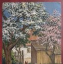 Postales: POSTAL DE 1913. Lote 155308350